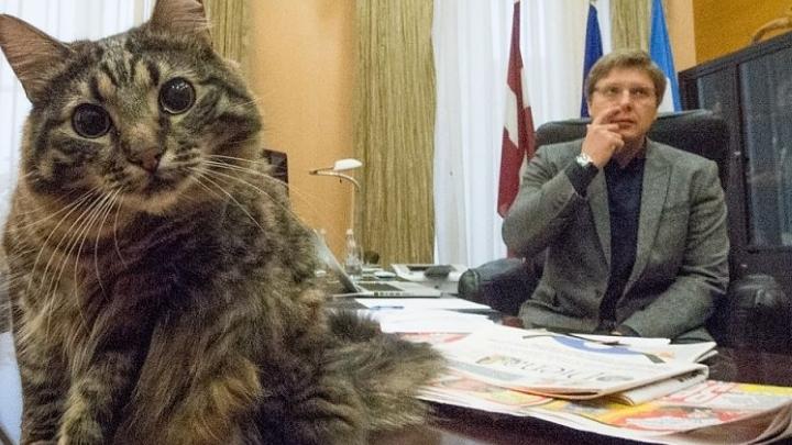 Ušakova un Amerika vadītā dome mēģinājusi krāpties. Tiek gatavota prasība tiesā