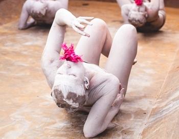 Ropažos sācies 5. starptautiskais laikmetīgās dejas festivāls Vides deja