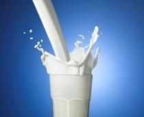 Lauksaimnieki lūdz Ministru prezidenti aizstāvēt Latvijas piena ražotājus